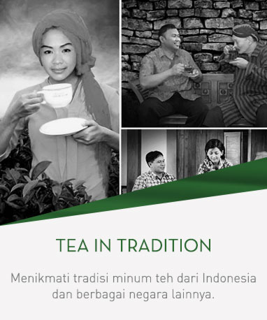 home-teaintradition-gss-18-ina